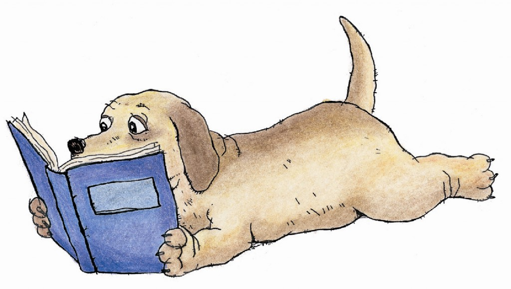 Paws to Read with a Therapy Dog